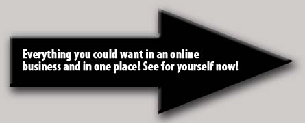 Online-Business-Opportunity -Pic2